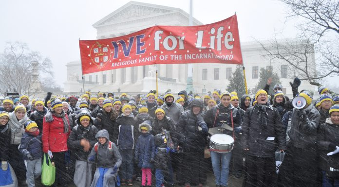 Institute of the Incarnate Word March for Life